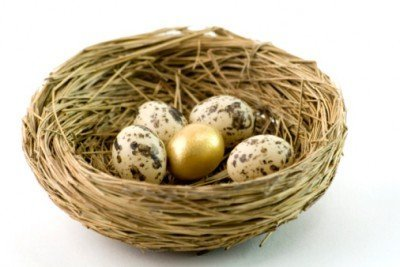 Image result for all egg in basket
