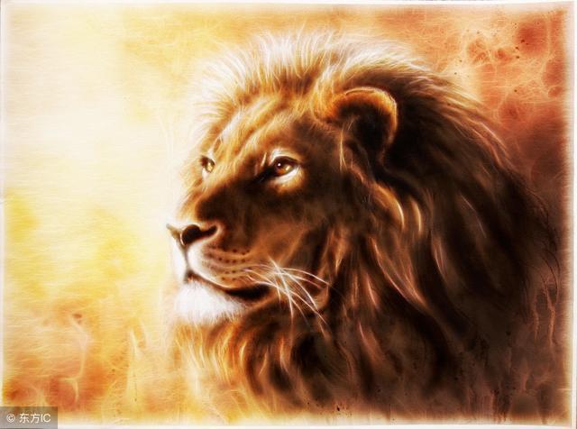 """李嘉誠:一個能成大事的人,要先把自己變成""""仁慈的獅子""""!"""
