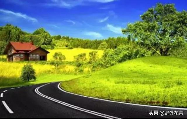 人生路上,學會拐彎