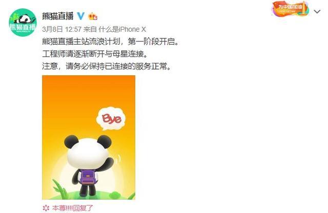 """創業有多難?王思聰花16億養不活一隻""""熊貓""""..."""