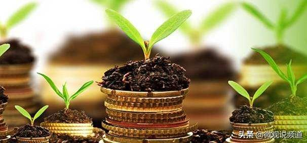 五個觀點,讓錢找你;人本身就能吸引財富!