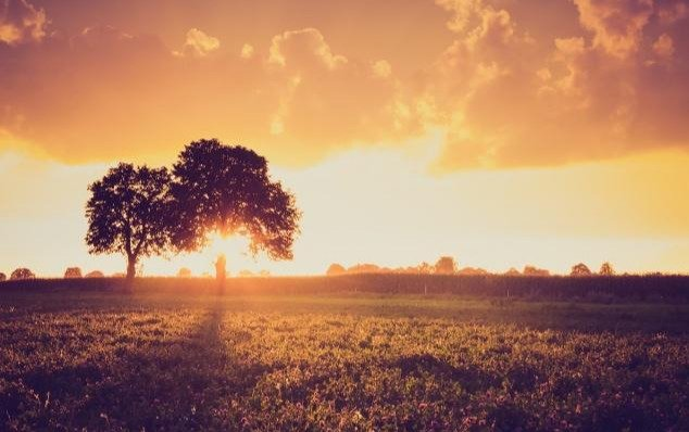富人定律:懂得感恩,能幫你贏得貴人,也是成為富人的重要一步